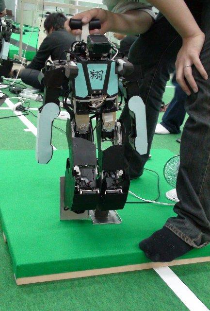 ヒューマノイドロボット 翔